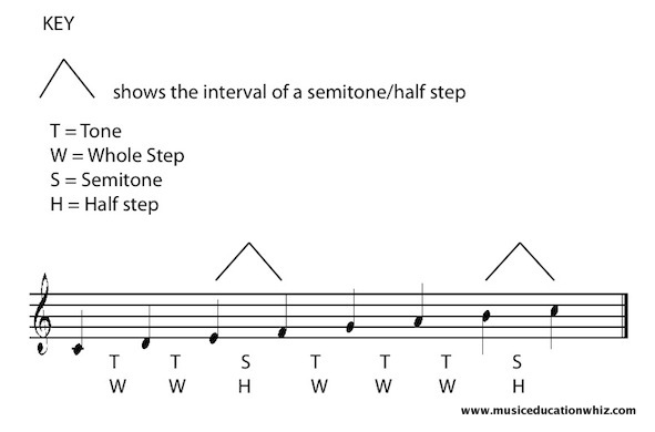 The C Major Scale on the staff with tones/whole steps and semitones/half steps marked in.